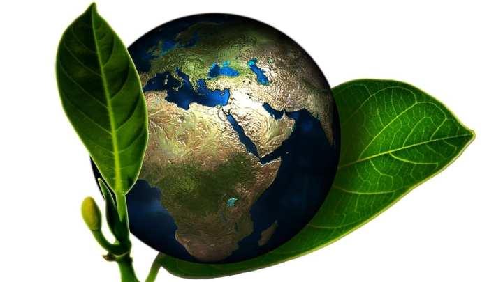 Global renewable energy consumption set to rise through 2040