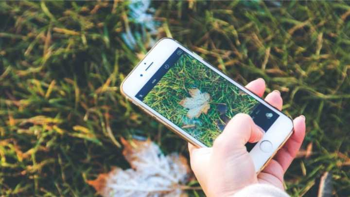 Are Green Mobile Phone Providers The Future?
