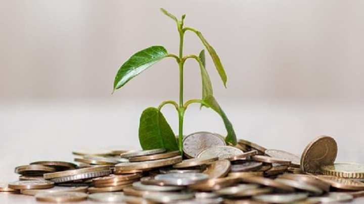 Green investments plummet in the UK