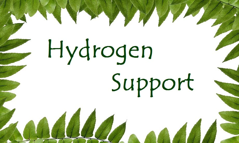 Hydrogen research receives more support from the DOE
