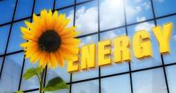 Transparent Solar Cells - Solar Windows - sunflower - solar energy