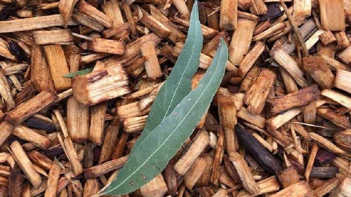 Green waste-to-energy could provide reliable power to regional Australian communities