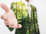 small businesses are joining the critical sustainable entrepreneurship