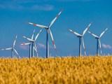 wind farm operators - wind turbines