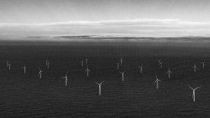 Offshore wind farm - wind turbines at sea