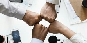 Green hydrogen consortium - Business - Team