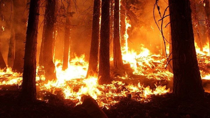 California wildfires are moving faster due to climate change