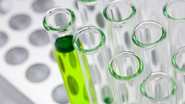 Researchers develop new green hydrogen fuel purification membrane