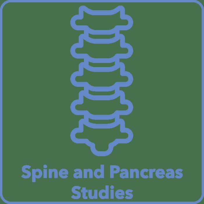 Spine and Pancreas Studies