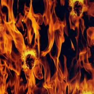 Skull Cranes enflammés