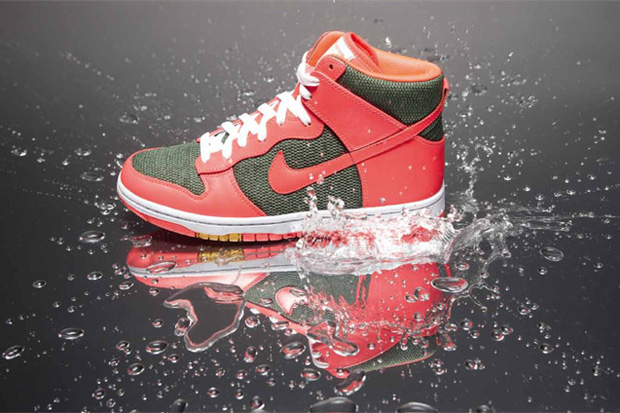 maharam nike sportswear 2010 fall dunk previews 2 Maharam x Nike Sportswear 2010 Fall Dunk Collection Preview