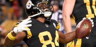 Antonio Brown Could Be a Niner