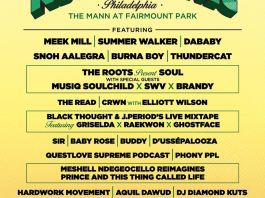 Roots picnic 2020