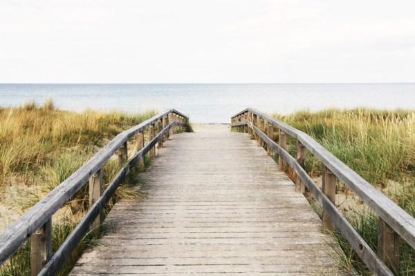 Der Herzensweg: Den Pfad Deines Herzens gehen