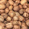 walnuts-whole-and-shelled-facebook, Stress Response