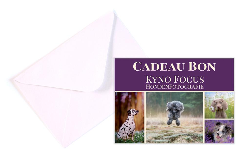 Cadeaubon-kyno-focus