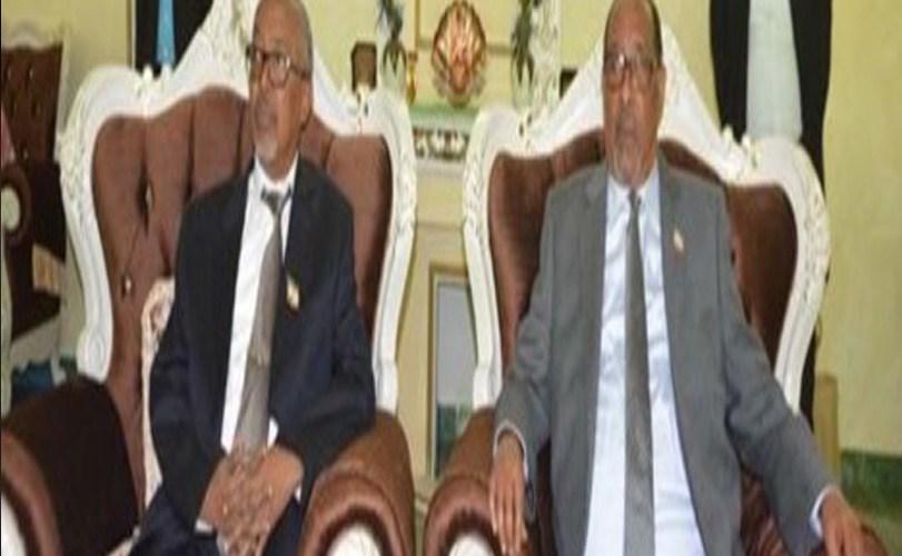 Somali land VP congratulates Nigeria