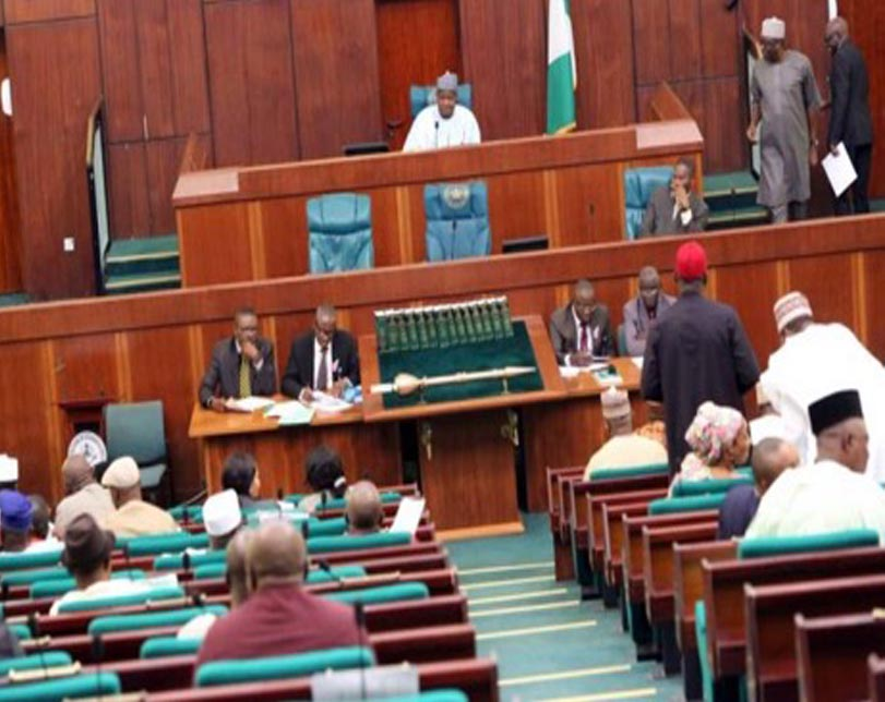 Reps adjourn plenary till April 2 for 2019 budget defence sessions