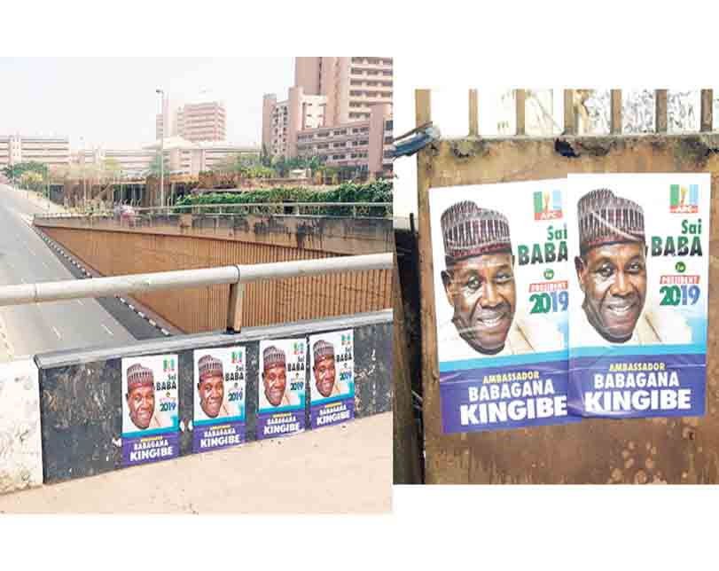 2019 Election: Kingibe's campaign posters flood Abuja, Lagos