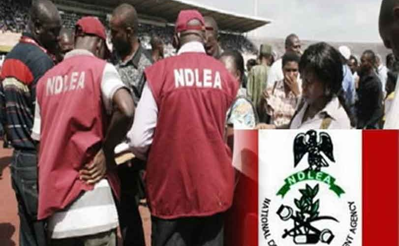 NDLEA Nationwide Recruitment 2019