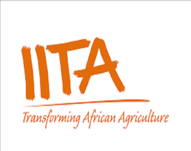 IITA inaugurates mobile App to help farmers control weeds