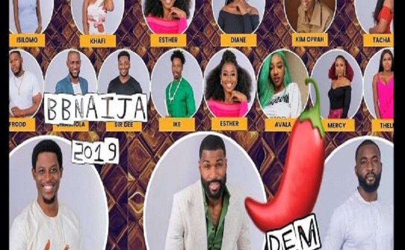 BBNaija 2019: How To Vote For Your Favourite Housemates