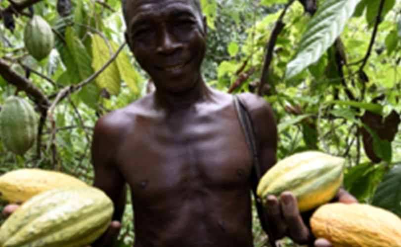 Climate change major threat to agricultural development – Expert