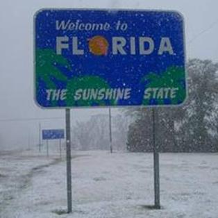 Image result for florida snow