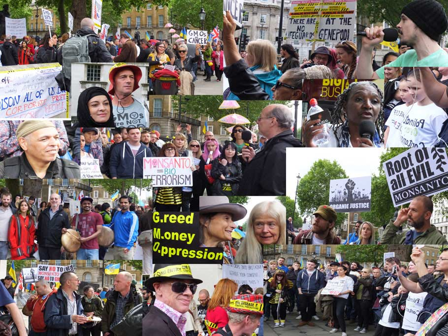 Marching against Monsanto