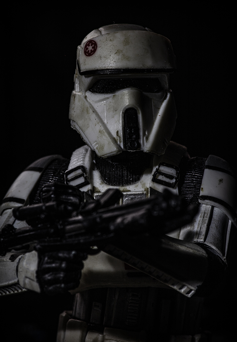 Trooper Portrait