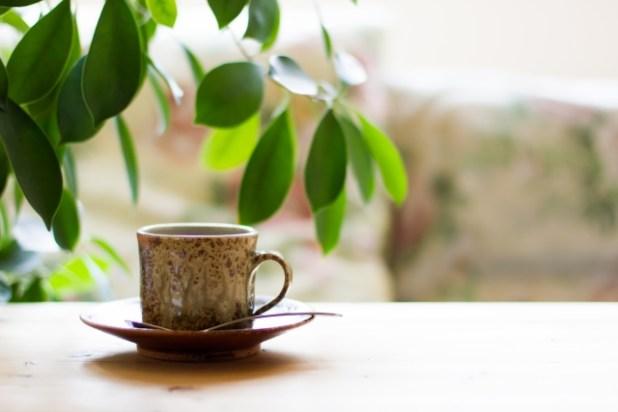 コーヒーと観葉植物