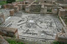 0076 Ostia - Terme dei Cisiarii - Frigidarium - Mosaik - Blick nach Süden