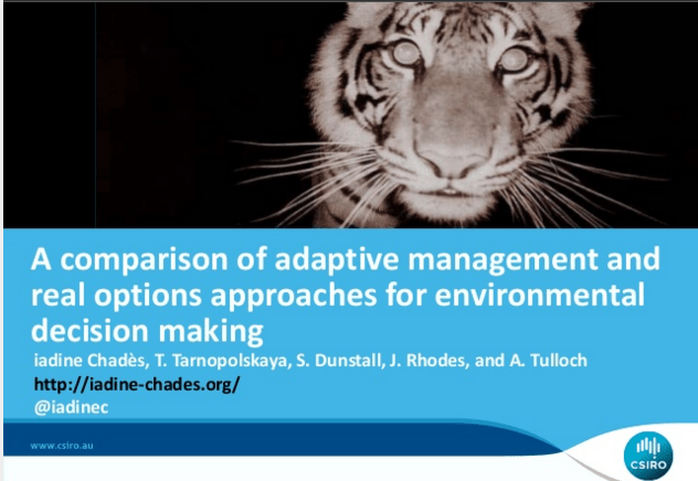Comparing adaptive management and real options: slides and PDF