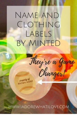 I Adore What I Love Blog // THESE LABELS BY MINTED ARE A GAME CHANGER // www.iadorewhatilove.com #iadorewhatilove
