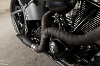 adrenaline softail by walz 03