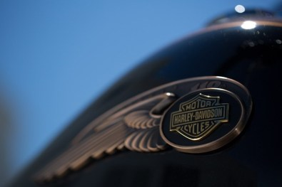 Harley Davidson 110th Anniversary models 05
