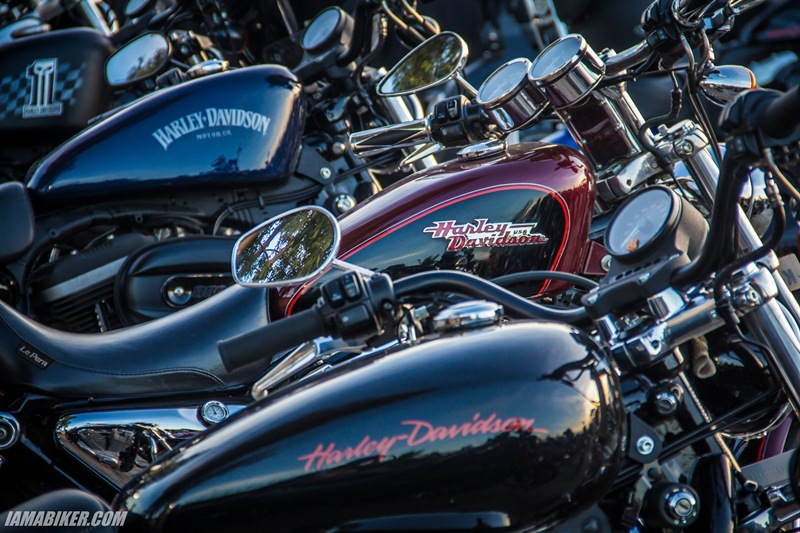 Harley Davidson Rock Riiders Season 3 - 66