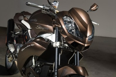 Aprilia Tuono Stingray by Vilner Custom - 05