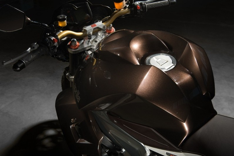 Aprilia Tuono Stingray by Vilner Custom - 10