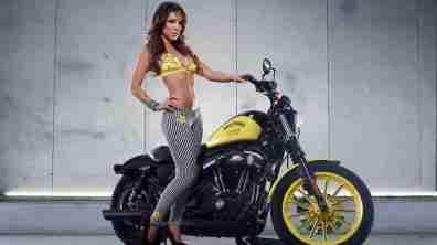 Harley Davidson Rockstar Energy 14