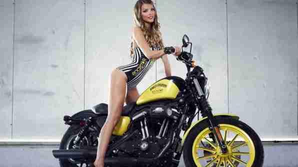 Harley Davidson Rockstar Energy 17