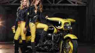Harley Davidson Rockstar Energy 25