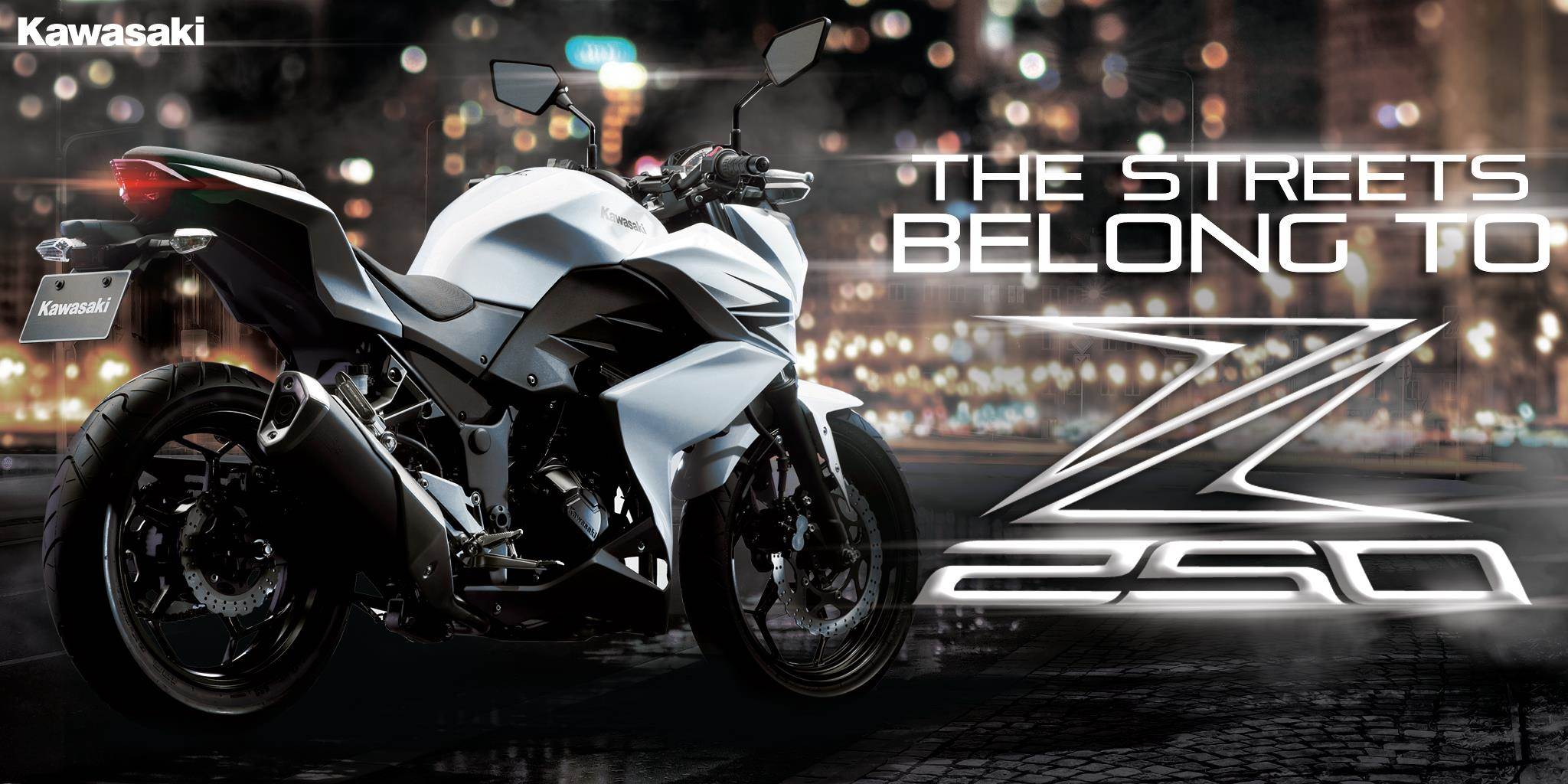 Kawasaki Z250 India launch