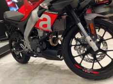 Aprilia RS 150 and Tuono 150 front suspension