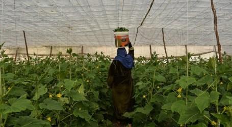 تحديــات سوق العمل والمرأة السورية في تركيا