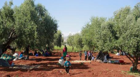 نازحوا الشمال بين جشع «سوريين» ونار «النظام»
