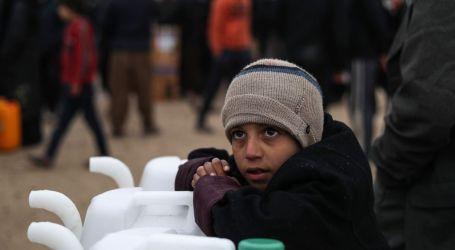 الأمم المتحدة: 12,5 مليون سوري يعانون انعدام الأمن الغذائي