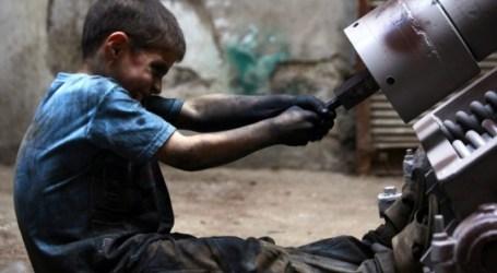 عمالة الأطفال في زمن الحرب السورية.. حرمان من التعليم والاستقرار النفسي