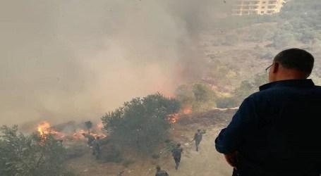 نيران الحرائق وصلت للقرداحة ولاطيران روسي أو إيراني يساند الإطفاء