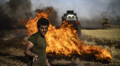 الأمم المتحدة تصدر تقريرا يوضح الخسائر الأولية للحرائق في سوريا
